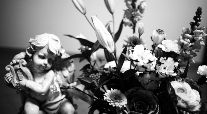 flowers and an angle
